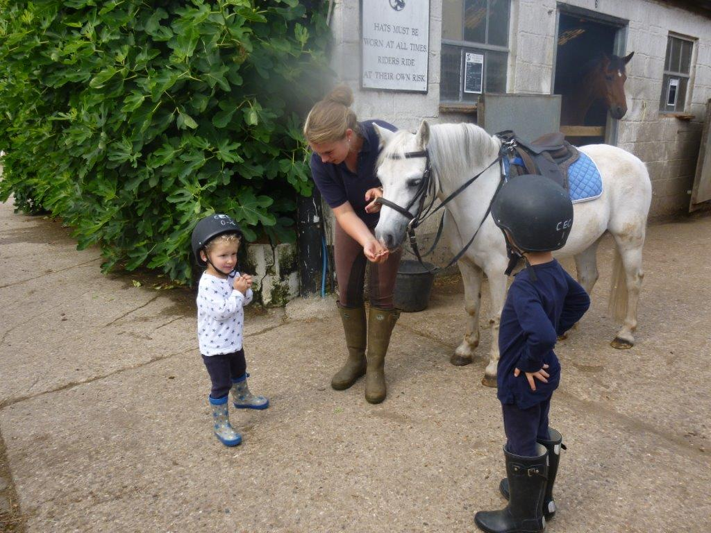 Vicki showing Otto, Noah how to feed pony